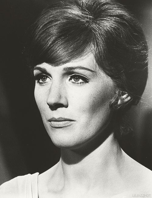 Julie Andrews.  Grace, class, elegance, and good breeding defined.  A woman with true and raw talent who carries herself with pure grace.  She holds firm to the foundations of her beliefs, whether or not they are popular.  She demonstrates against what she disagrees with, but does so with gusto and majesty.
