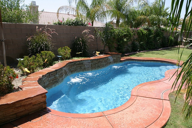 Freeform swimming pool example wish this was your pool for Swimming pool design xls