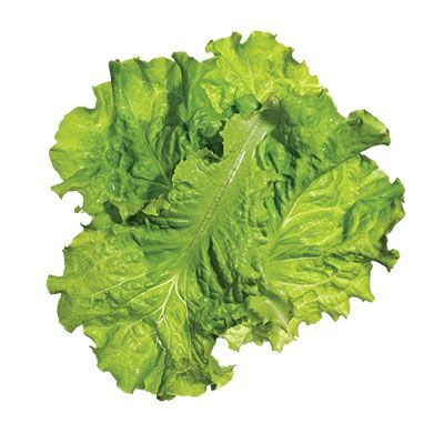 Keep lettuce fresh and crisp with this easy tip.