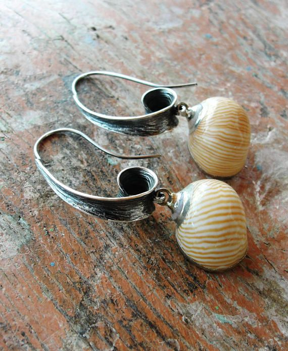Natica Lineata Shell Earrings Sterling Silver Natica Lineata