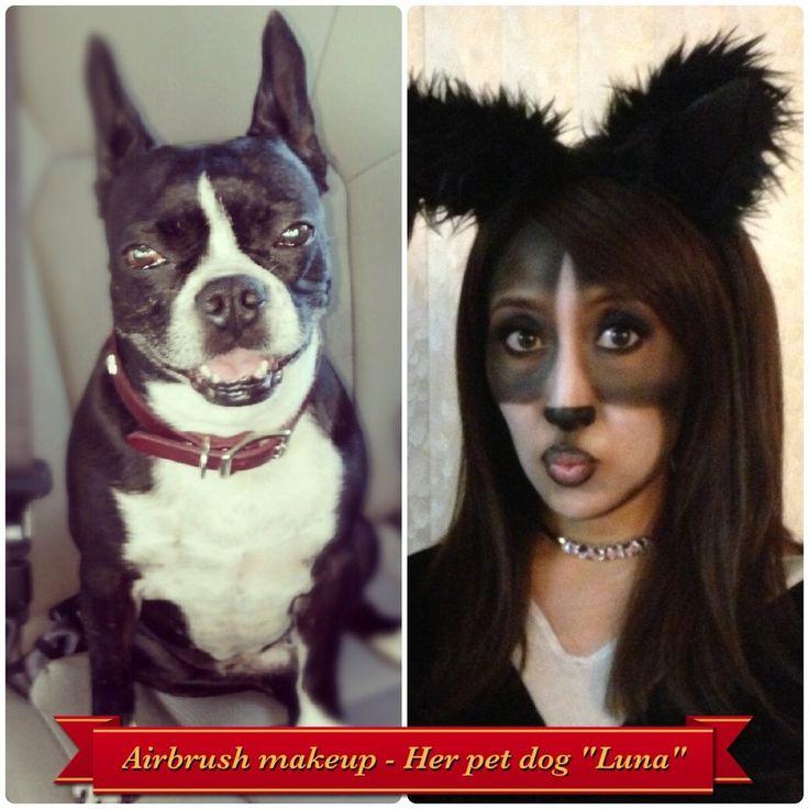 19 best Boston Terriers Rock images on Pinterest | Boston terriers ...