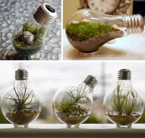 Tiny gardens inside of old, repurposed lightbulbs.  Light Bulbs As Art: 14 Shining Examples | WebUrbanist