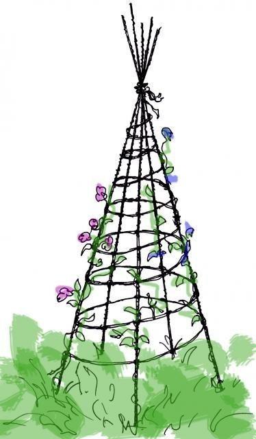 En enkel klätterpyramid för luktärter.