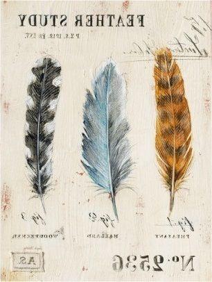 Nature's Feathers (Angela Staehling)