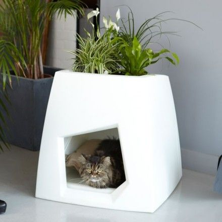 """The Kokon Cat House: It's a modern and innovative cat house called """"Kokon""""; it comes from Pousse Creative. Atop of it you can plant a small roof garden and it comes with a small pillow for your cat to enjoy a nice nap."""