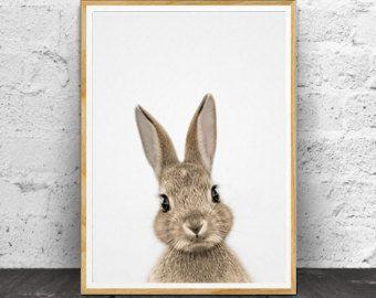 Kinderkamer kunst AFDRUKBARE kunst Animal print door TheCrownPrints