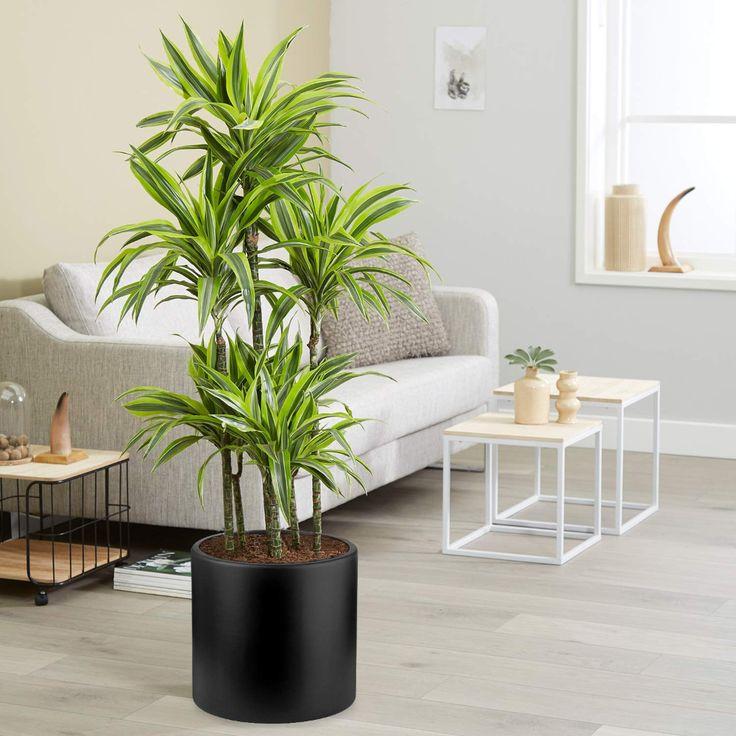 amazon flower pots large