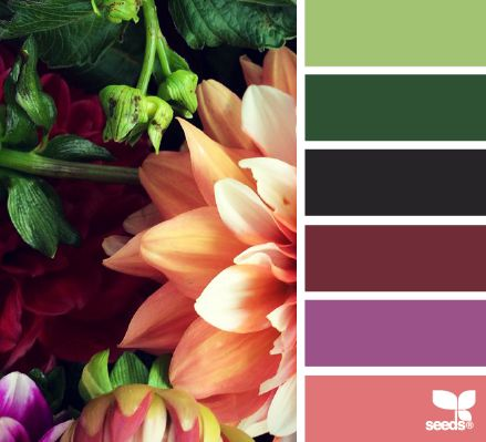 Rich Flora Hues - http://design-seeds.com/index.php/home/entry/rich-flora-hues