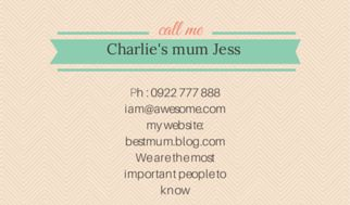 Parent Cards or Contact Cards, like a business card. Came across these on vista print and wrote a tongue in cheek post on their different options