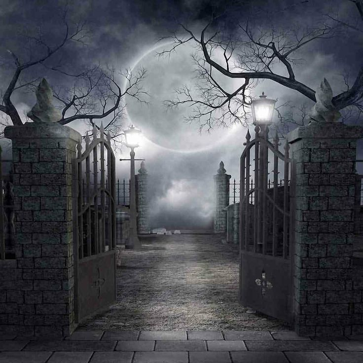 Mystery Night 10' x 10' Gates to Eternity BACKDROP. Large ...