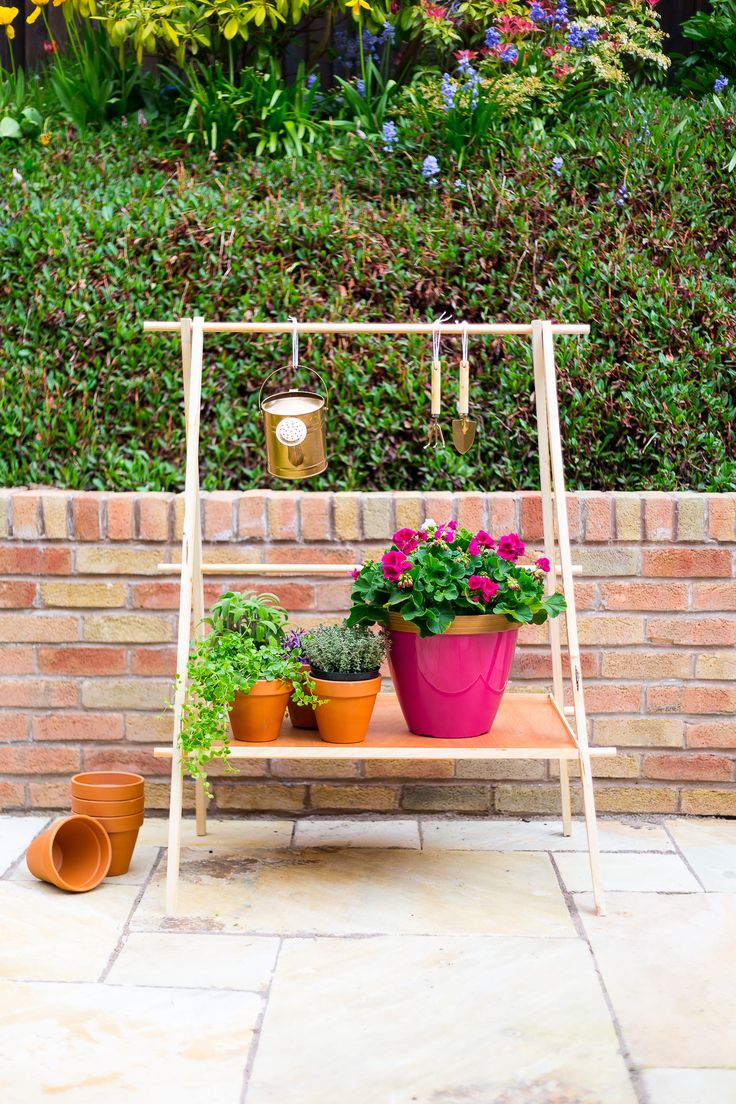 DIY Ladder Plant Stand for Making a Compact Garden