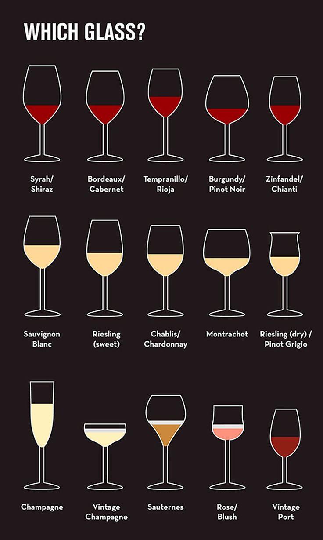 beginner's guide to wine Glasses