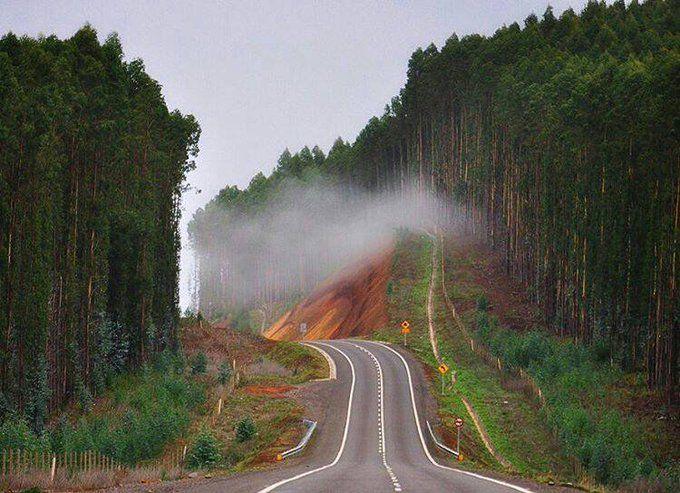al sur de Chile alto bio bio