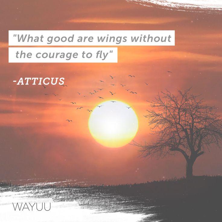 """""""¿Qué tan buenas son unas alas sin el coraje para volar?"""" Tienes todo lo que necesitas para emprender el camino hacia tus sueños. Es cuestión de dejar el miedo a un lado y lanzarse a la aventura sin mirar atrás. ¡Aprende a expandir tu ser con nuestros cursos!👇 http://goo.gl/R572Jw"""