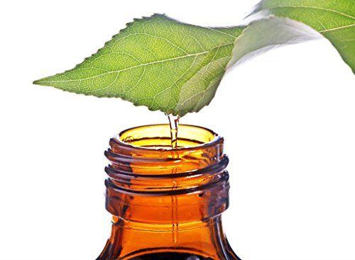 L'olio di camelia è ideale per il suo uso cosmetico: è in grado di donare elasticità alla pelle di viso e collo e rinforzare i capelli.
