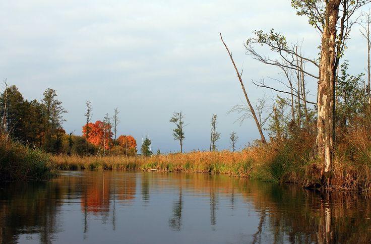 Rzeka Krutynia jest piękna o każdej porze roku. Tak samo o każdej porze roku można nią pływać. Nawet zimą, kiedy organizowany jest Spływ Twardzieli.  fot. Mrągowskie Centrum Informacji Turystycznej