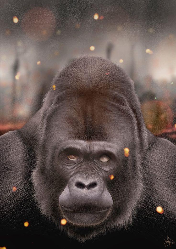 Jaime Sanjuan: Gorilla