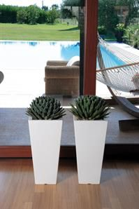 These Oltrevaso pots look wonderful indoors as well as outdoors.