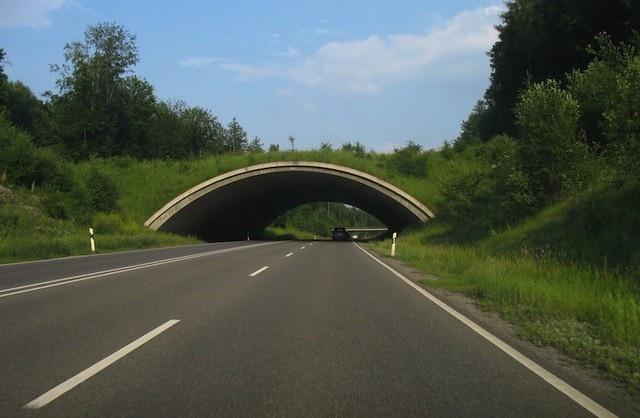 wildlife bridge  Germany