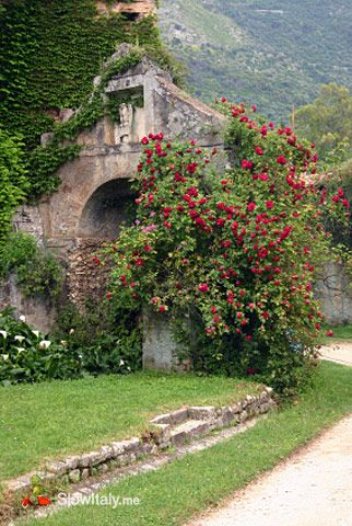Ninfa is a deserted and overgrown ghost town presumably for Giardino di ninfa italy