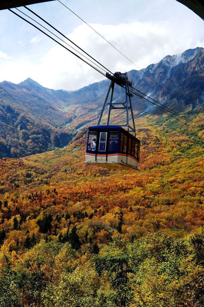 360度大パノラマ!紅葉真っ盛りの立山黒部アルペンルート | 富山県 | Travel.jp[たびねす]