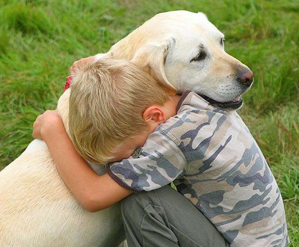 so sweet: Reduce Stress, Best Friends, Old Dogs, Funny Pictures, Quote, Pets, Dogs Show, Little Boys, Animal