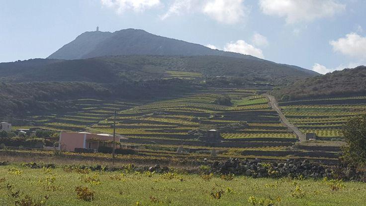 Isola di pantelleria.   Sole e mare a novembre