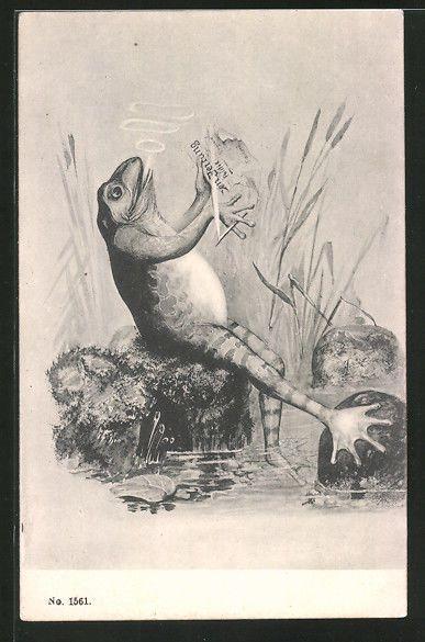 alte AK Frosch beim Zeitung lesen und Zigarette rauchen in Sammeln & Seltenes, Ansichtskarten, Motive | eBay