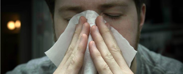 A new approach to treating allergies could could not only prevent them, but also strengthen the body's immune system.