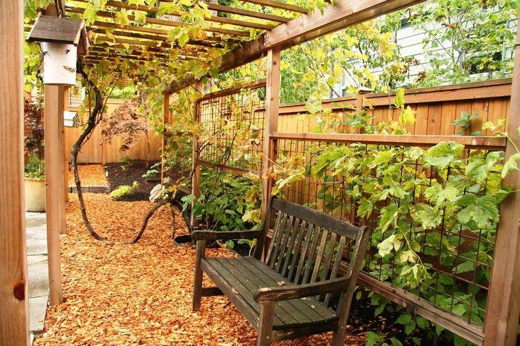 Best 25 trellis design ideas on pinterest garden ideas for Arbor decoration ideas