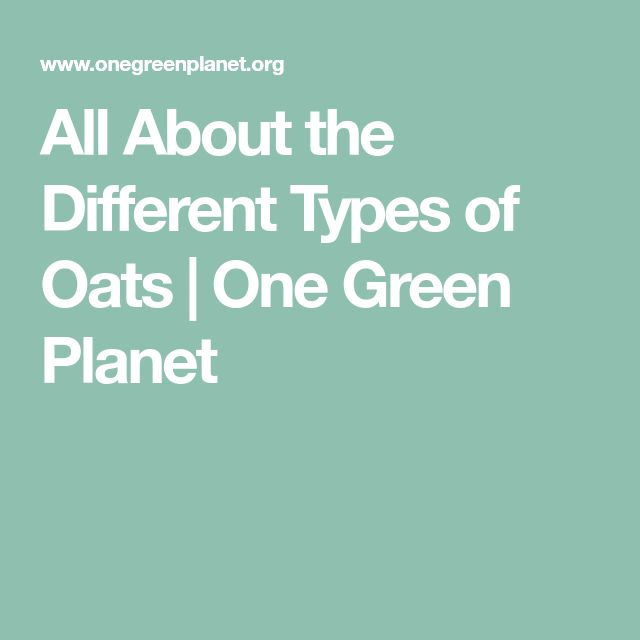 All About the Different Types of Oats   One Green Planet