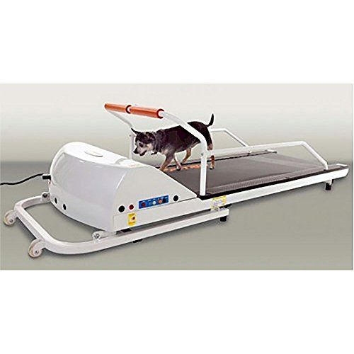 PetRun PR710 Dog Treadmill >>> Check out this great product.