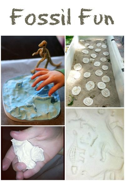 Fossil Fun for Kids from Fantastic Fun and Learning