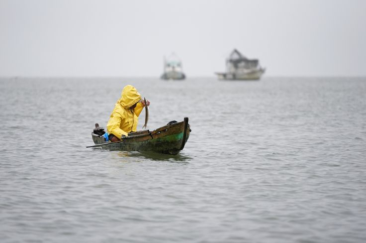 Fisherman with his boat and fish by Tomas Mähring on 500px. Fisherman with his boat and fish. #boat #cloudy #fish #fisherman #fishing #guatemala #izabal #livingston #raining #rainy #sea #yellow