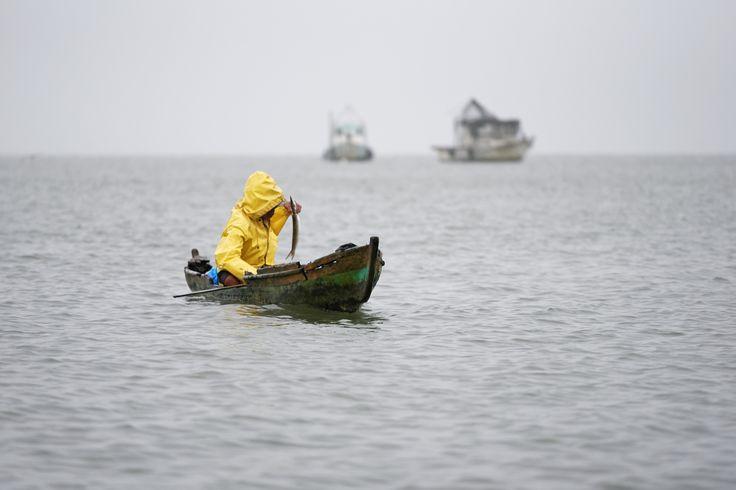 Fisherman with his boat and fish by Tomas Mähring on 500px. Fisherman with his boat and fish. #boat #cloudy #fish #fisherman #fishing #guatemala #izabal #livingston #raining #rainy #sea #yellow