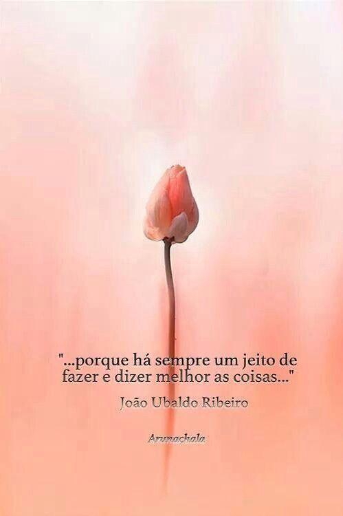 João Ubaldo Robeiro