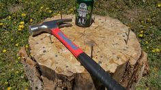 Stump drinking game. SO MUCH FUN!! I prefer teensy nails and a teensy hammer :)