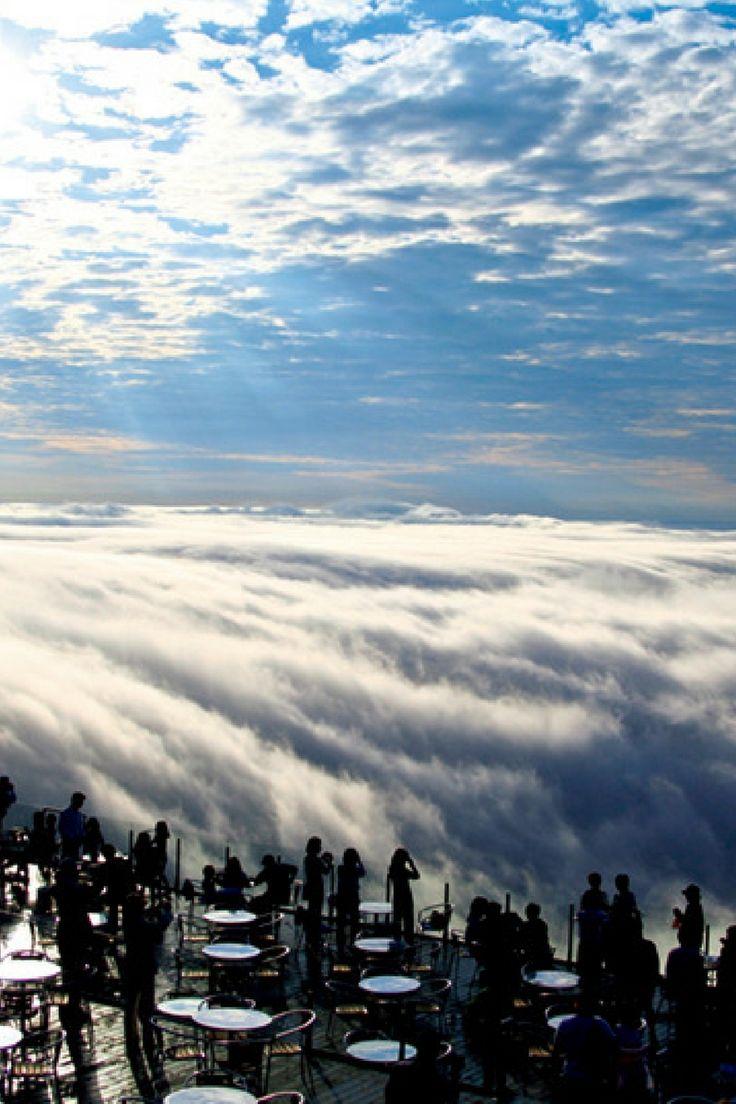 雲海テラス 日本 / 北海道 国内に数多く存在する雲海スポットの中でも、手が届きそうな臨場感が魅力の雲海テラス。訪れる客を圧倒するその近さは、標高1088mというやや低めの位置設定によるもの。ゴンドラで気軽に登れる点も人気の秘訣だ。澄んだ空気の中で雲海を見下ろすと、文字通り雲上人になった気分に。今年の営業は5月16日〜10月13日の早朝のみ。
