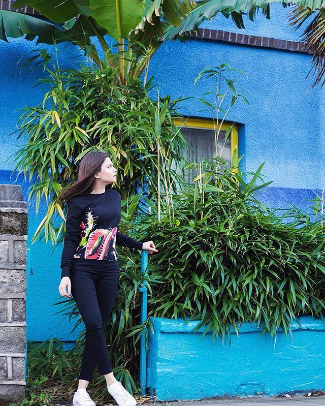 Co tam Grey Mousowicze?Dobrze rozpoczeliście wczoraj tydzień? 🙈 Znaleźliśmy idealne miejsce na zdjęcie naszej nowej bluzy 🙈 #newbrand #polishbrand #fashion #love #animals #plants #followus #greymousefashion #blue