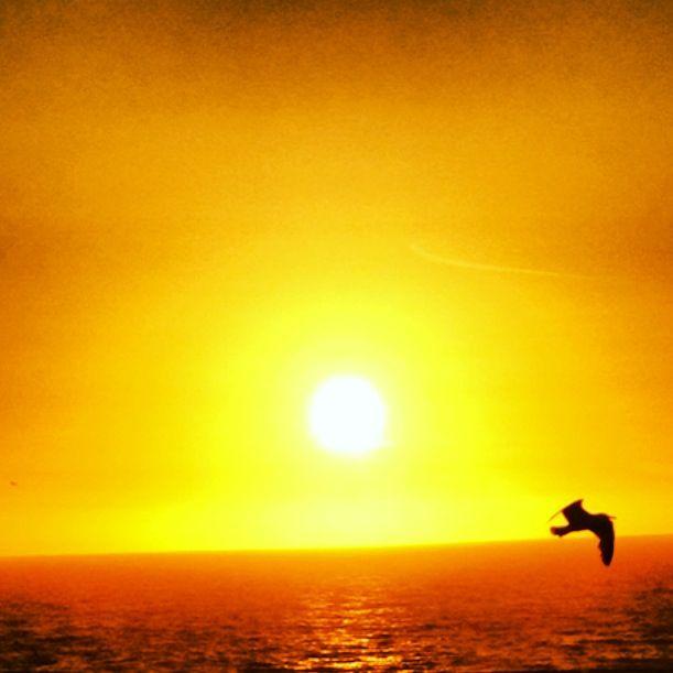 Summer night sunset