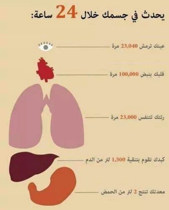 Translation for people who didn't understand: In 24 hours... Your eyes blink 23,040 times- Your heart beats 100,000 times- Your lungs breath 23,000 times- Your liver cleans 1,500 liters of blood- Your stomach produces 2 liters of acids