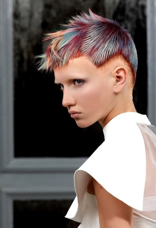 Dmitry Vinokurov and Pro Park Jun Dissected Hair Color collection