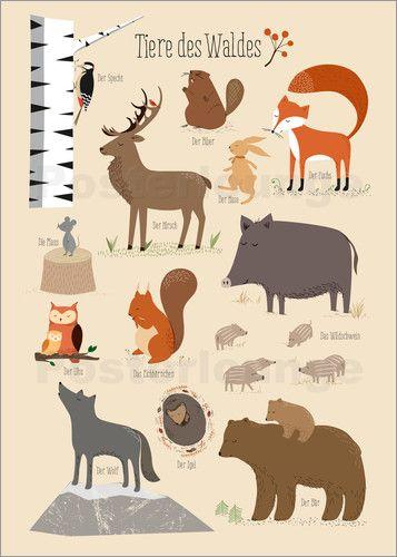 Poster Tiere des Waldes