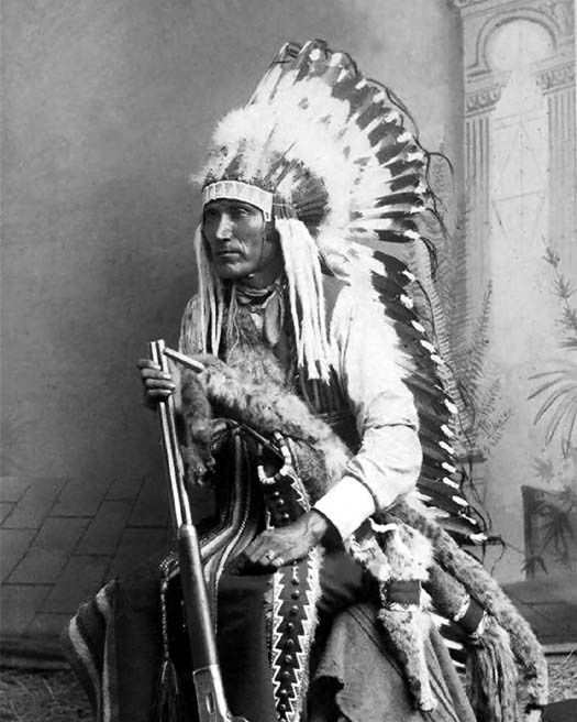 indian chief and wolf - photo #9