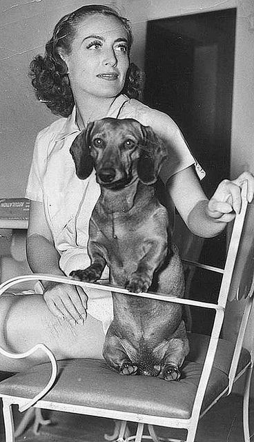 Joan Crawford and Dachsund