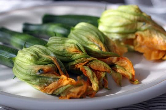 fried Squash Blossoms, easy to adapt for paleo!