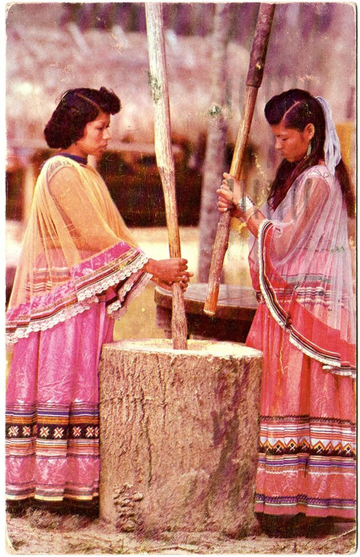 SEMINOLE Indian Girls grinding corn, Ross Allen's Indian Village, Silver Springs, Florida, c.1950. Photo by Mozert. Postcard published by Davidson and Ray, Operators of Florida's Silver Springs, edited c.1950.