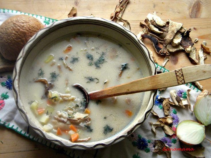 Hribii sunt printre ingredientele de baza a mancarurilor din Bucovina. Sunt atatea mancaruri cu hribi, galbiori…si tot felul de ciuperci incat iubitorii lor cu siguranta s-ar simti de minune intr-o bucatarie bucovineana.  Ciorba de hribi merg