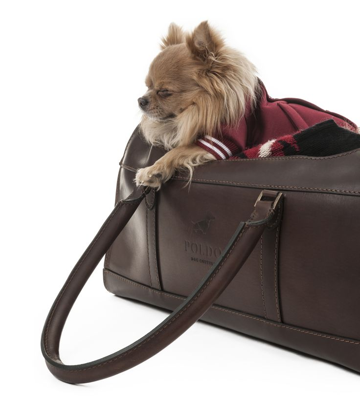 POLDO DOG COUTURE - LEATHER CARRIER Made of leather with two air intakes. Handles with leather wrap. Suitable for air travel. High quality materials and very versatile. #poldodogcouture #poldo #dog #couture #carrier #dogoutfitters