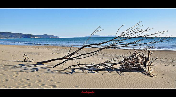 Marina di Alberese beach, Maremma......